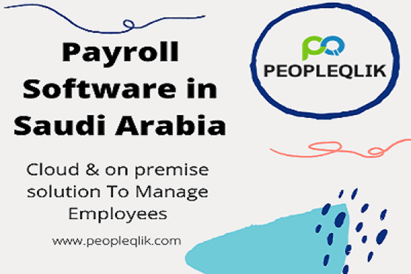 Payroll Software in Saudi Arabia is a Smart Choice for Small Businesses