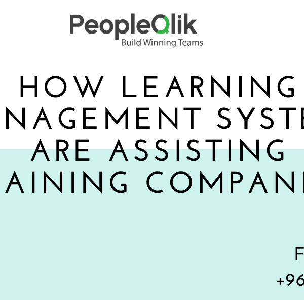 How Learning Management Systems are Assisting Training Companies